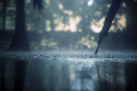 ทาสีน้ำมัน แล้วฝนตก 1